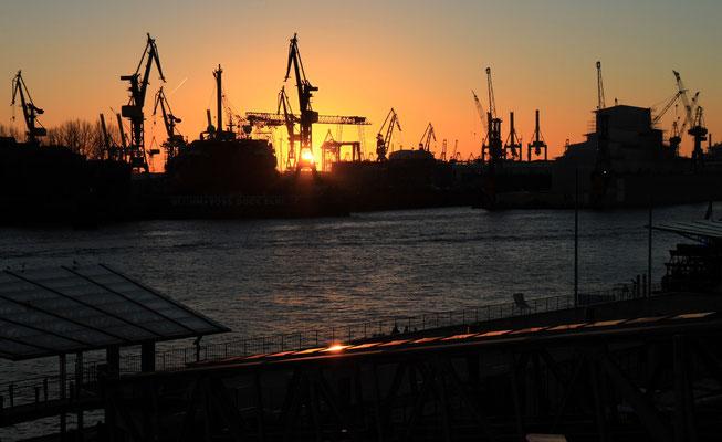 Der Hamburger Hafen von seiner schönen Seite