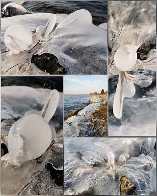 Evelyne Blums Art zu fotografieren natürliche Eiskunst 2 am Murtensee