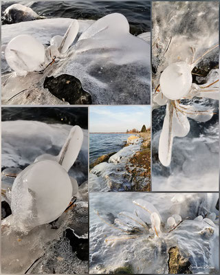 natürliche Eiskunst 2 am Murtensee