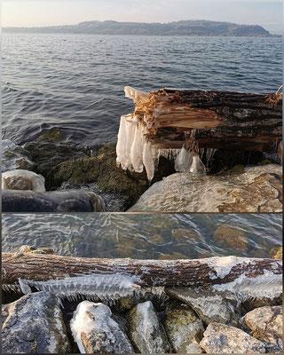 Evelyne Blums Art zu fotografieren Eiszapfen am Baumstamm Murten