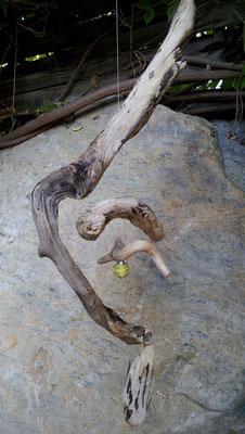 "Schwemmholzaufhänger ""Zitronenräupchen"""