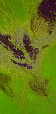 Leinwandbild Frühlingsgefühl Grösse 40 x 80 x 4.5 cm