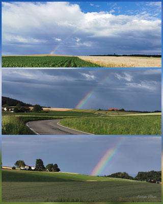 Regenbogen Richtung Bern