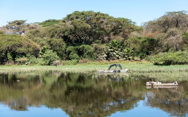 Autre vue du lac Awassa.