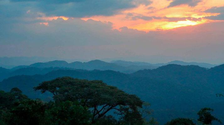 Au coucher du soleil, depuis le lodge broadbill forest camp de Emmy Gongo
