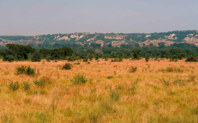 Vue de la savane et du rift africain