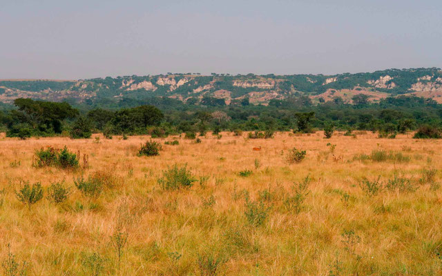 View of the savannah and the African rift