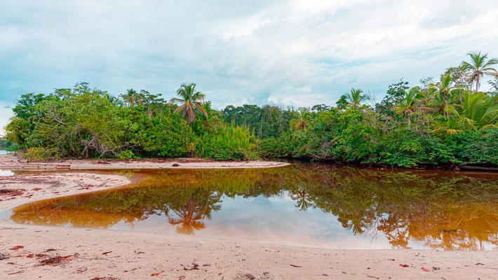 Rio Suarez rejoignant l'océan