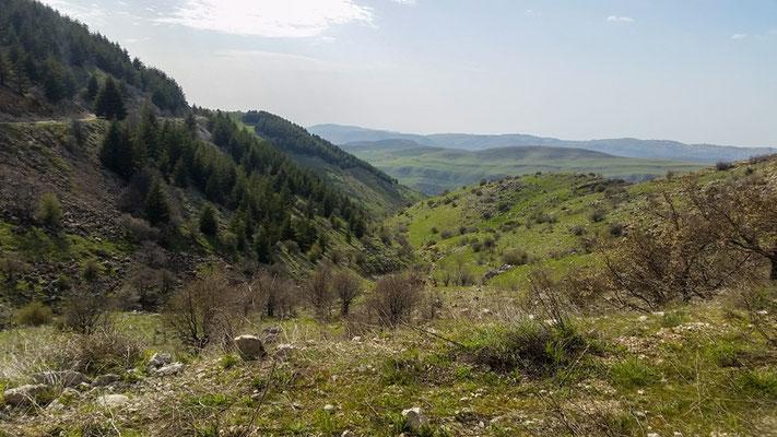 Natural environments at the foot of the mountain