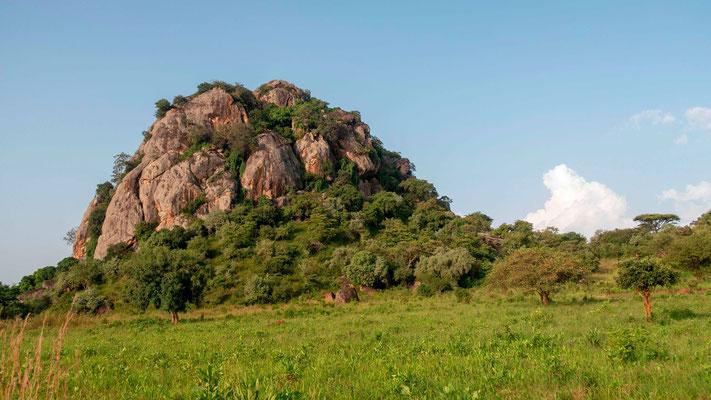 Paysage en route pour la vallée de Kidepo