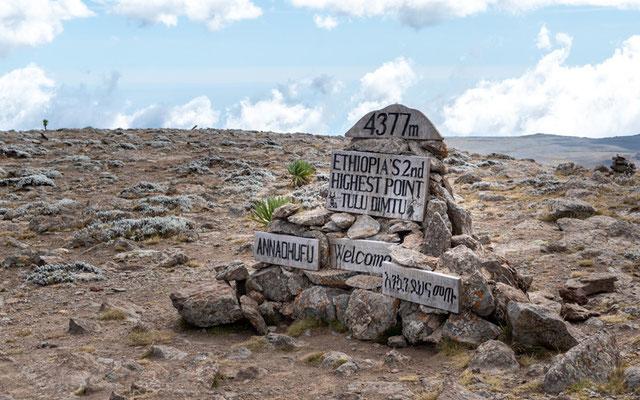 Tullu Dimtu, le plus haut sommet des montagnes de Bale, le 4e plus haut sommet d'Ethiopie. 4550m