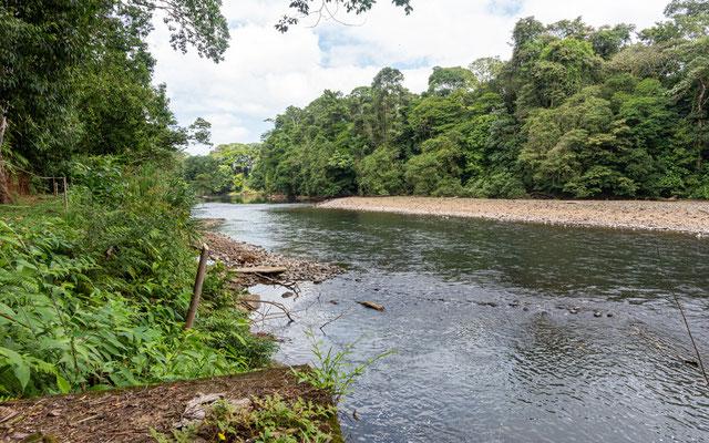 El Rio Puerto Viejo