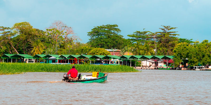 Arrival by boat in the village of Tortuguero
