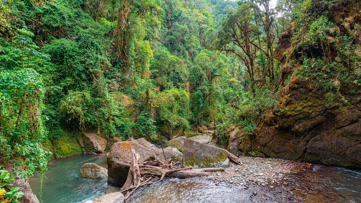 Chute d'eau sur la rivière Savegre.