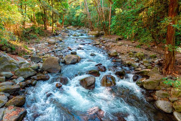 Rivière Savegre