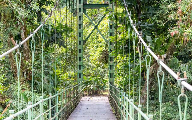 Le fameux pont suspendu reliant les bâtiments du centre à la forêt.