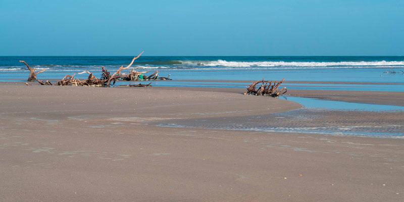 """Beach at the """"Langue de Barbarie"""""""
