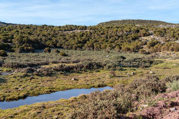 Paysage du Parc national de Bale