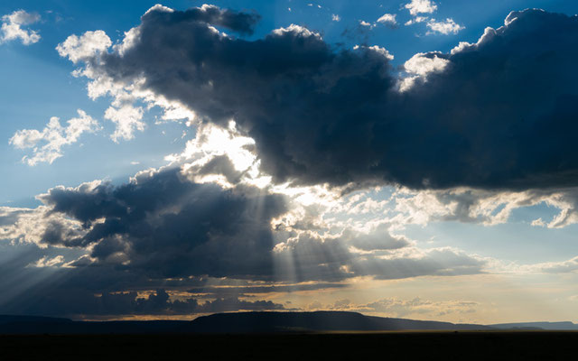 L'orage se rapproche doucement sur les plaines du Serengeti