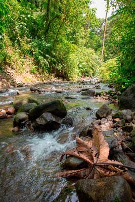 Agua caliente river