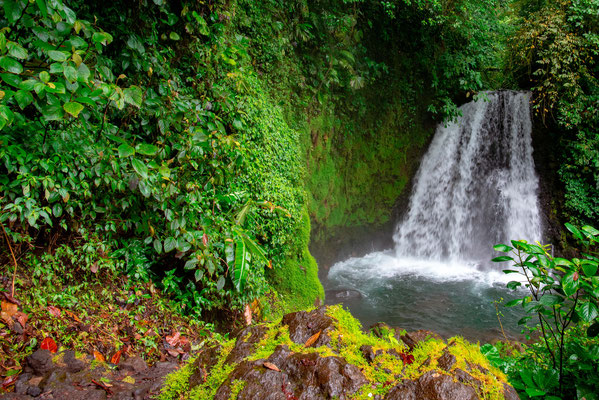La cascade Danta