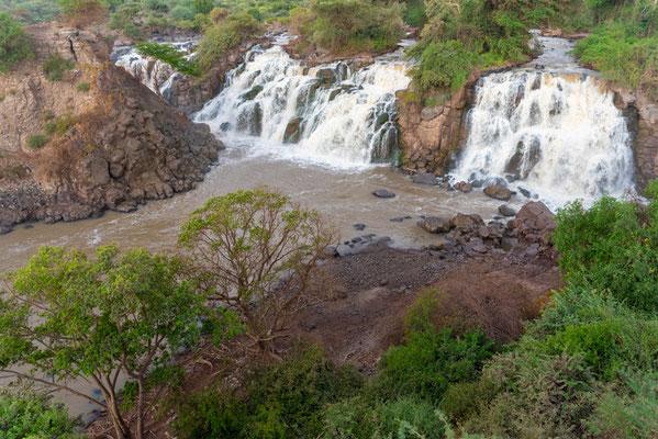 Parc national d'Awash