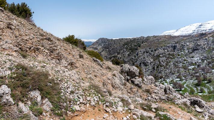 View of Jabal Moussa
