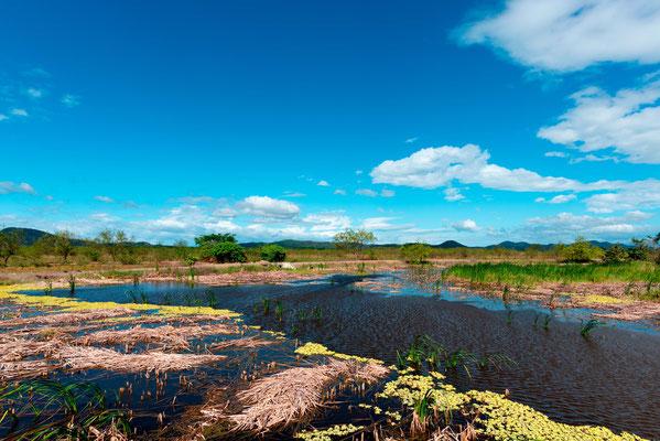 Marais de Rancho Humo