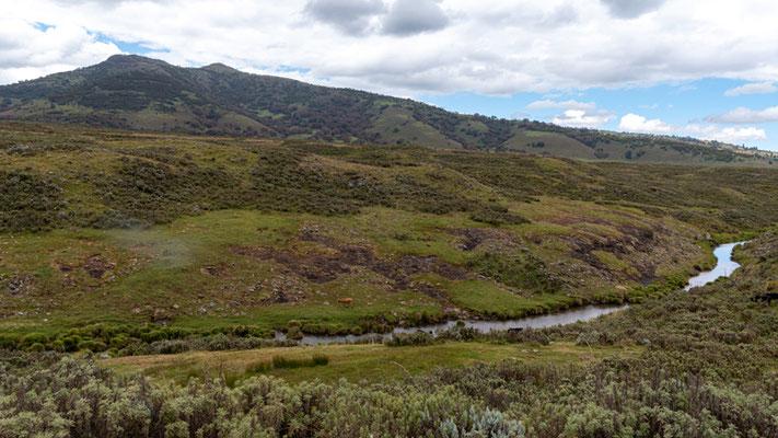 Paysage du Parc national de Bale. Prairies humides.