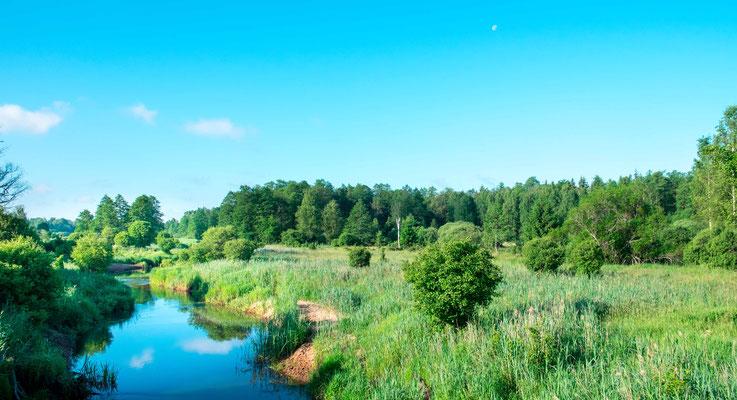 Country landscape around Bialowieza