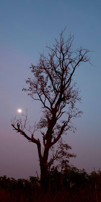 Coucher de soleil chez Birame