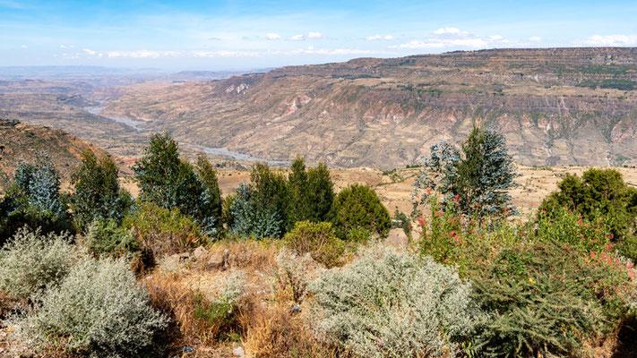 Cliffs of the Jemma valley from Debre Lebanos