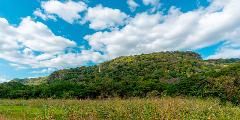 Paysage à Rancho Humo