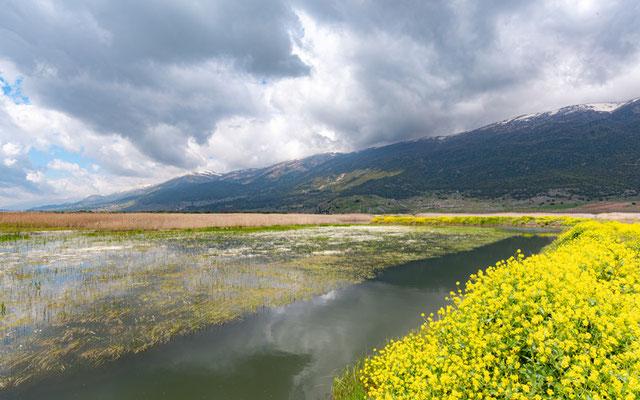 Aammiq wetland and surrounding hills