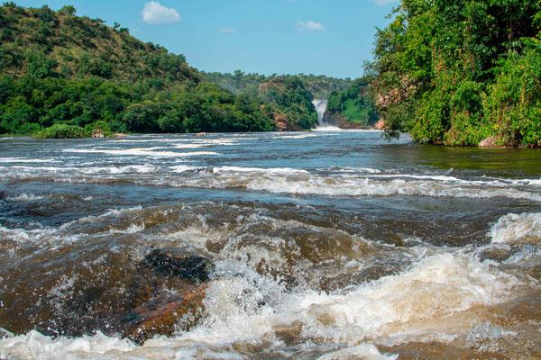 Vue sur les chutes du Nil Victoria depuis un bateau. Magnifique