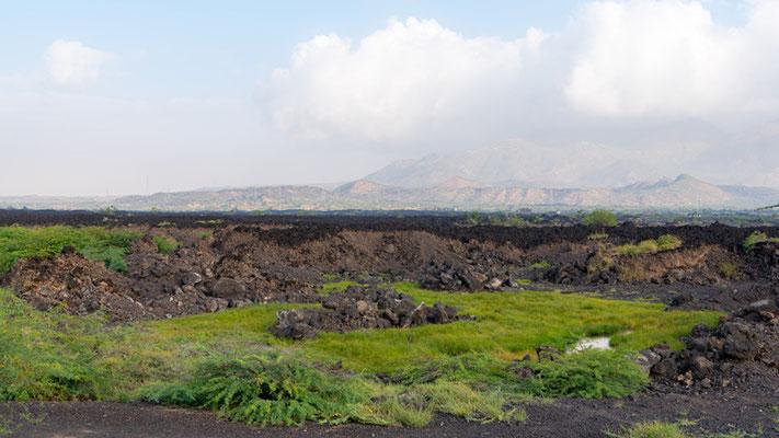 Volcanic landscape at the edge of Lake Basaka