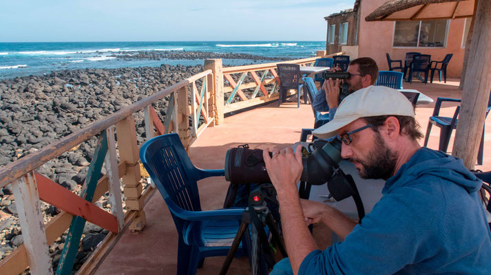 Seewatching depuis la terasse de l'hotêl Calao à Dakar