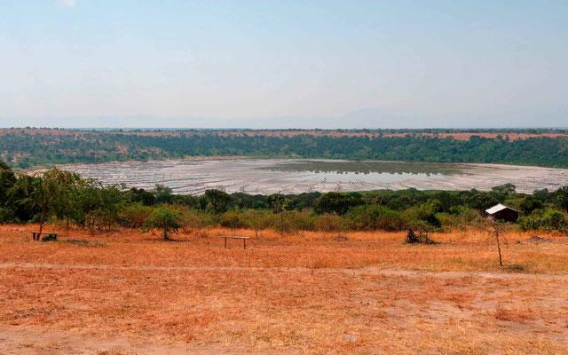 Salt lake where we observed: Lesser Flamingo, Gull-billed Tern , African Sacred Ibis and Black-winged Stilt