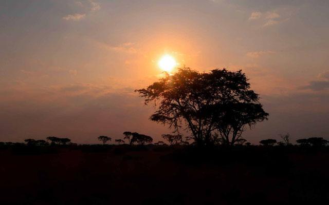 Coucher de soleil sur le PN de Ishasha