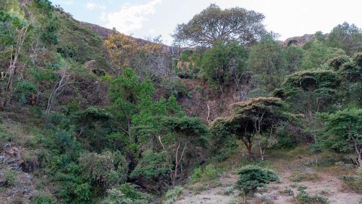 Paysage typiques de la vallée de Jemma