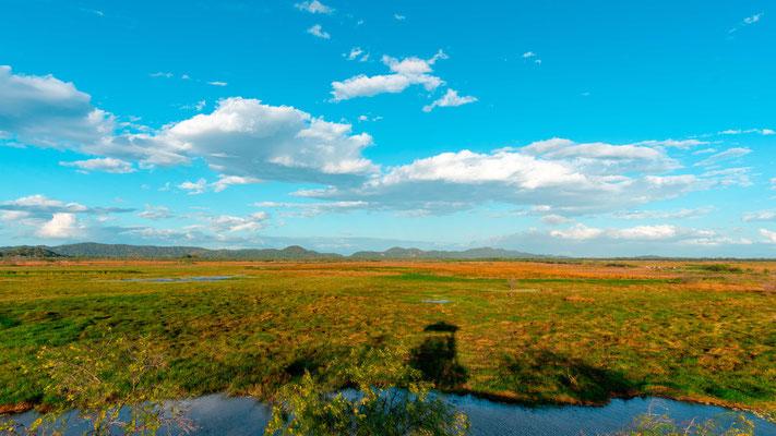Vue sur le marais de Rancho Humo