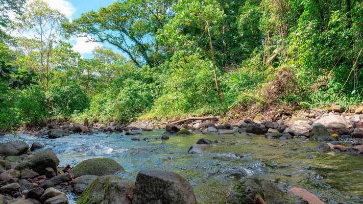 Rivière Agua caliente en contrebas de l'hôtel Arenal