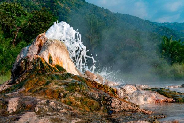 Les sources d'eau chaude de Semuliki