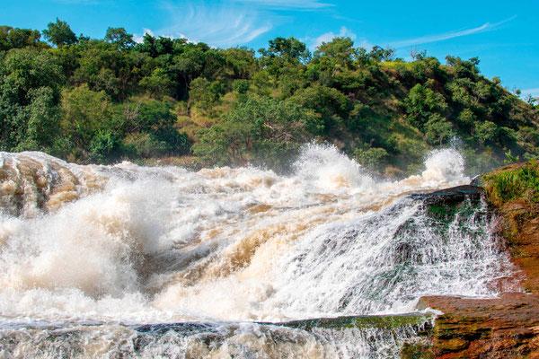 The impressive Victoria Nile Falls in Murchisson Falls Park