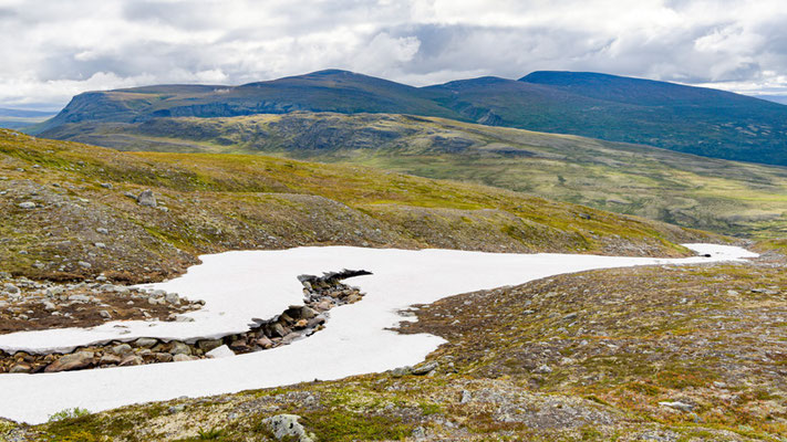 Paysage du Parc national de Dovrefjell-Sunndalsfjella