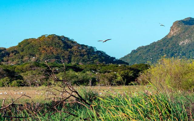 Marais de Rancho Humo et ses collines