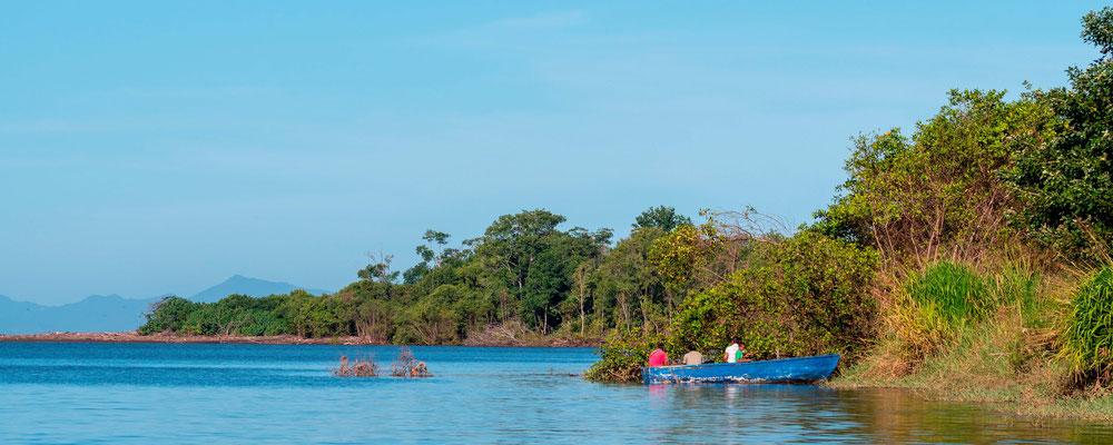 Vue du bateau sur le fleuve Tarcoles