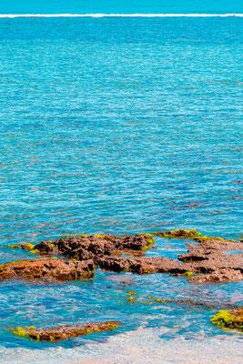Barrière de corail.