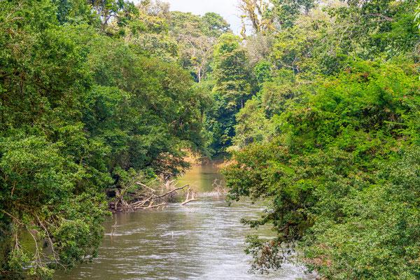 Le Rio Puerto Viejo