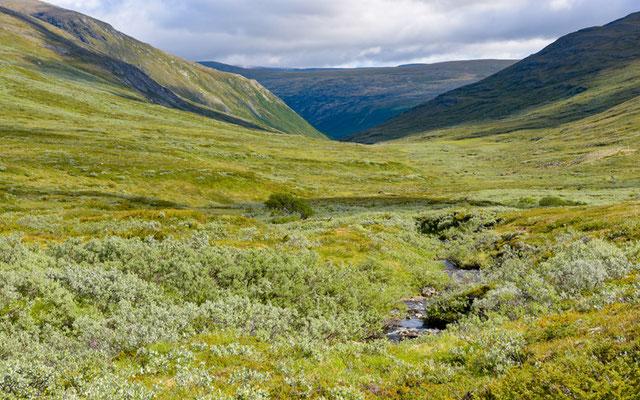 Landscape of the  Dovrefjell-Sunndalsfjella national park